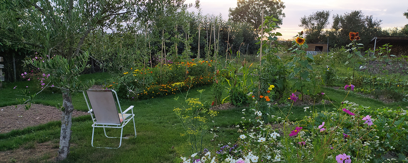 creation-jardin-potager