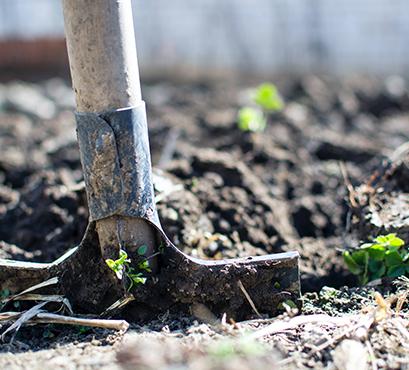 jardinage-reperes-ephad